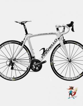 Bicicleta Pinarello Angliru 105 Mix