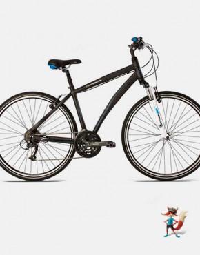 Bicicleta Orbea Ravel H40